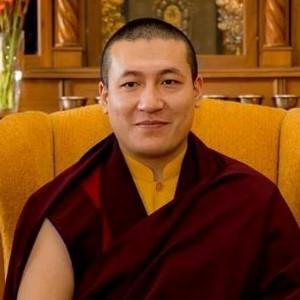 HH Karmapa Thrinley Thaye Dorje